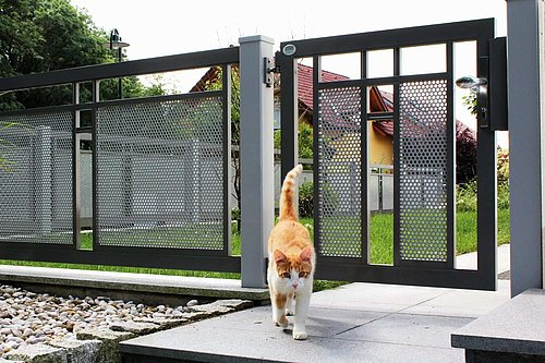 Dekorzaun in schwarz mit grauer Lochblechfüllung mit passender Gartentüre, Modell Loskana mit Dekorstab horizontal, vor Garten, Katze geht von Türe weg